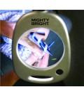 Floor Magnifier